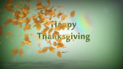 Happy Thanksgiving Leaves Stock Footage