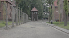 Auschwitz Alley and Blocks Stock Footage