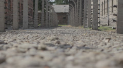 Auschwitz Lane and Barbed Wire Stock Footage