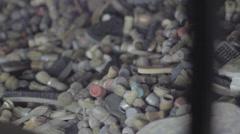Auschwitz Museum Brushes - stock footage