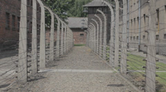 Auschwitz Lane with Barbed Wire Fences Stock Footage