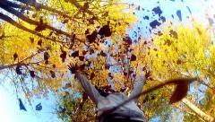 Fall fun! (hd,ntsc) - stock video Stock Footage
