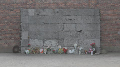 Auschwitz Museum Homage Stock Footage
