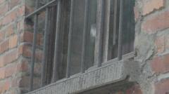 Auschwitz Latticed Window Stock Footage
