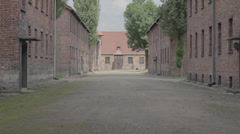 Auschwitz Alley and Blocks Stock Footage