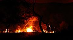Bushfire 2 Stock Footage