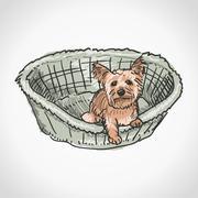 Yorkshire Terrier in Basket Stock Illustration