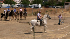 Spanish horse Stock Footage