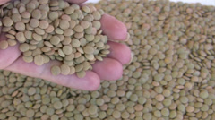 Heap of lentil Stock Footage