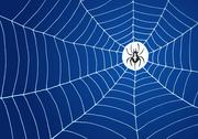 Stock Illustration of Spider and Net Illustration