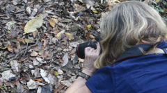 Taking picture of snake Stock Footage
