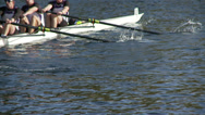 Stock Video Footage of Row, Rowing, Crew, Regatta