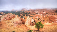 Bryce Canyon National Park Stock Footage