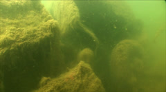 Underwater truck in lake Stock Footage