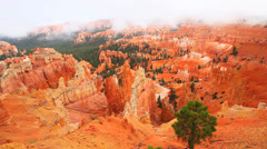 Fog rolls at Bryce Canyon National Park Stock Footage
