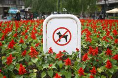 Sign prohibiting dog walking in a botanical garden, no dogs sing in flowers Stock Photos