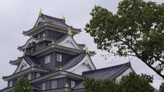 Okayama Castle Stock Footage
