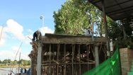 Stock Video Footage of 28.06.12 - Phuket. Thai workers works on cunstruction.
