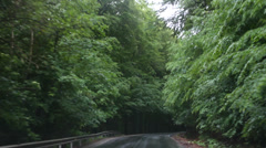 Beautiful drive through green forest, rainy wheather Stock Footage