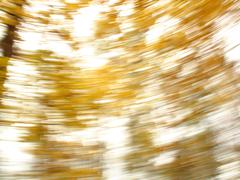 Golden background 5 Stock Photos