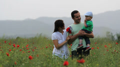 Perfect day, young family, parents and baby walk in blossom poppies field - stock footage