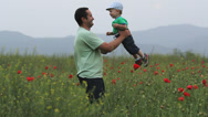 Stock Video Footage of Adorable baby child in father arms rotate in blossom red poppies field