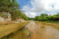 Shallow river bed Stock Photos