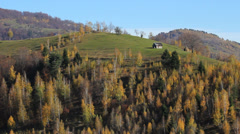 Lonely house om autumn hill, autumn forest surround the single house - stock footage