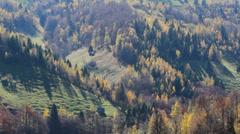 Late autumn landscape Stock Footage