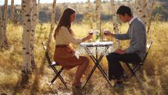 Cute Young Couple Drinking Wine in the Park - stock footage
