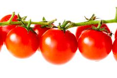 Stock Photo of tomatoes in a row
