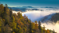 Stock Video Footage of Asheville Autumn / Fall Foliage with Moving Mist over the Blue Ridge Mountains