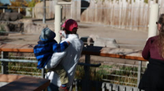 Little baby boy and mother watching rhinos at the zoo Stock Footage