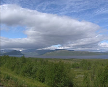 Pan lake and birch forest in glacial landscape near Kiruna, Sweden Stock Footage