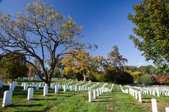 Rows and columns of us soldier's tombstones - stock photo