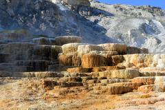 Mammoth Springs in Yellowstone National Park Stock Photos