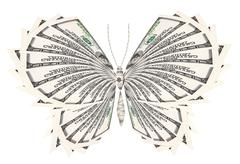Concept of successful butterfly Stock Photos