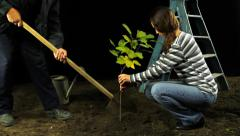 Woman Planting a Tree Environment Conservation Concept HD Stock Footage