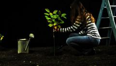 Ecology Tree Woman Planting Garden HD Stock Footage