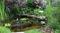 Moving Video of a garden Pond with a fountain Stock Footage