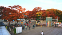 Namsan Miniature Stock Footage