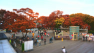Stock Video Footage of Namsan Miniature