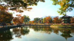 Hyangwonjeong Pavilion Stock Footage