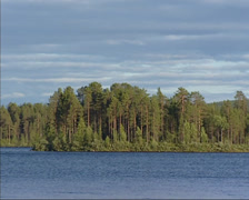 Pan Swedish pine forest behind flowing Lule river near Jokkmokk, midsummernight Stock Footage
