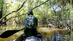 Boat trip on the amazonas, Howler monkey Stock Footage