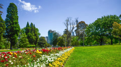 Melbourne Park Flowers panning Stock Footage