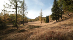 Italian alps field in autumn | Dolly shot left to right Stock Footage