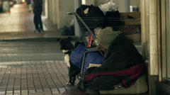 Homeless person with cart and blanket, cold night, with dog Stock Footage
