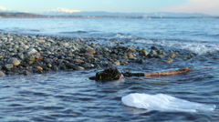HD Plastic bags in sea timelapse Stock Footage