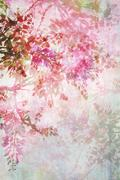 grungy background with floral border - stock photo